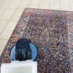 Come puliamo i tappeti in Pulicasa