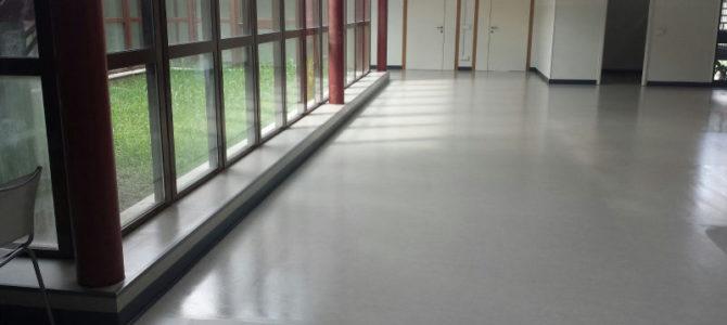 Lavaggio e Trattamento Pavimentazioni in PVC e Linoleum