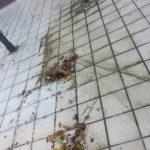 Lavaggio pavimenti esterni