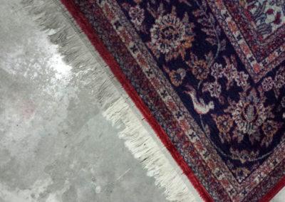 Pulicasa esegue la pulizia tappeti